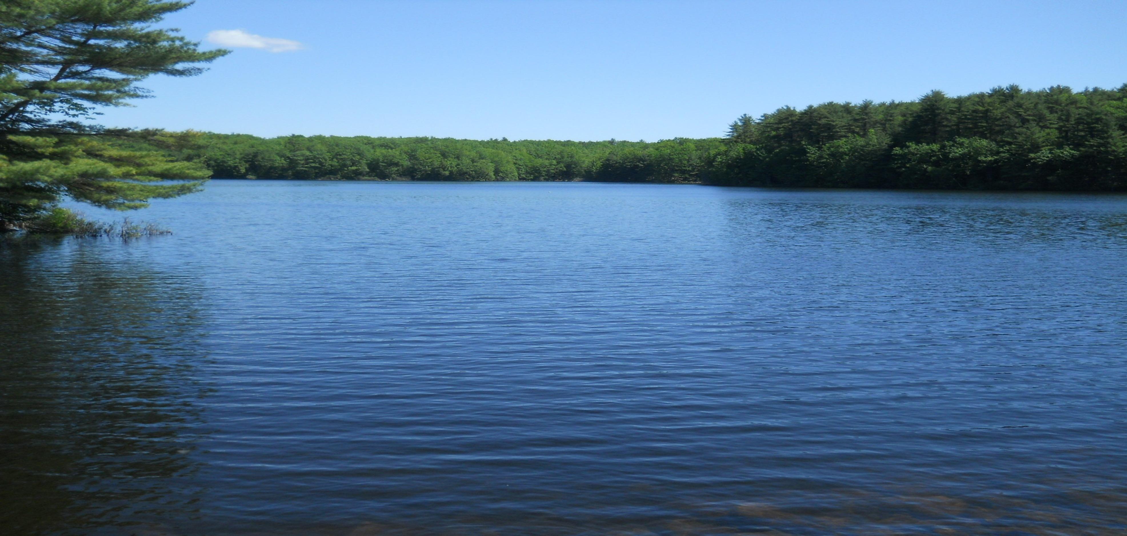 Boulter-Pond-Summer